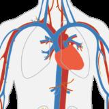 screening dell'aneurisma dell'aorta